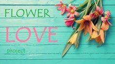 flower love project